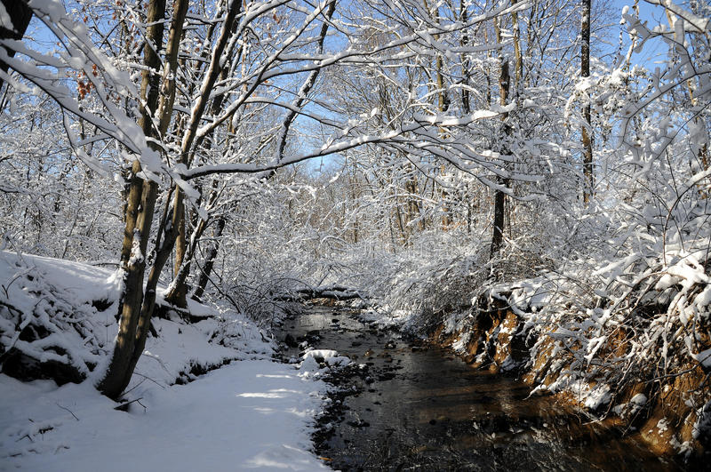 De Stroom van de winter royalty-vrije stock foto