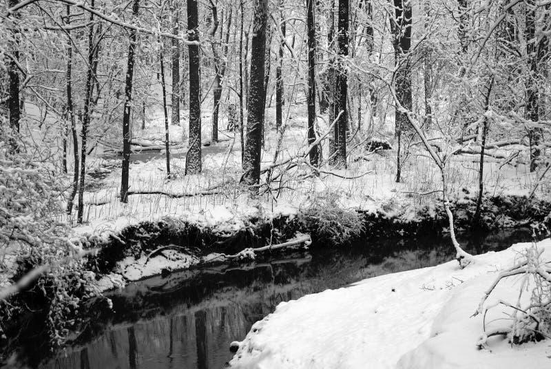 De Stroom Van De Winter Stock Foto's