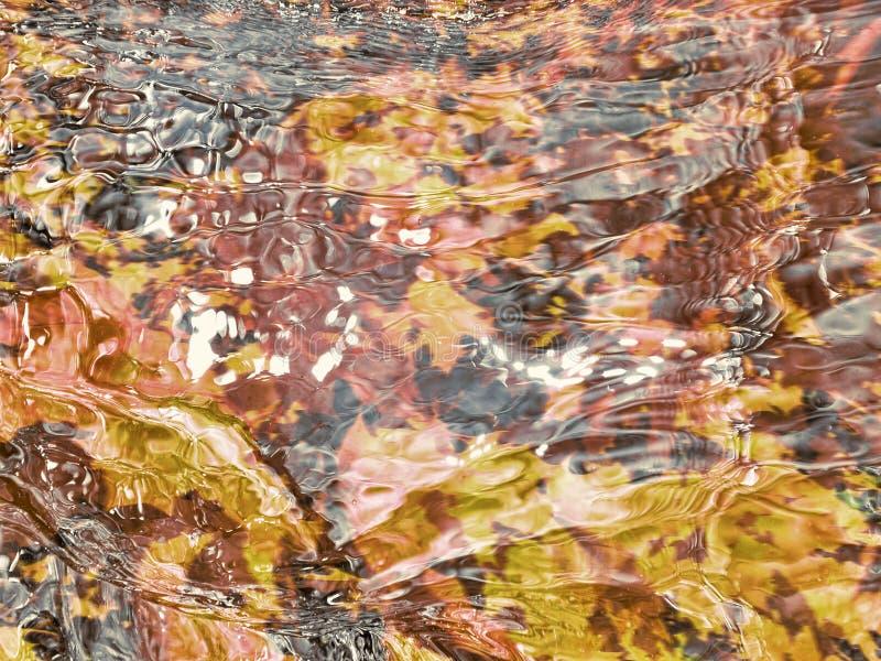 De stroom van de de herfstkreek ontwerpillustratie stock fotografie