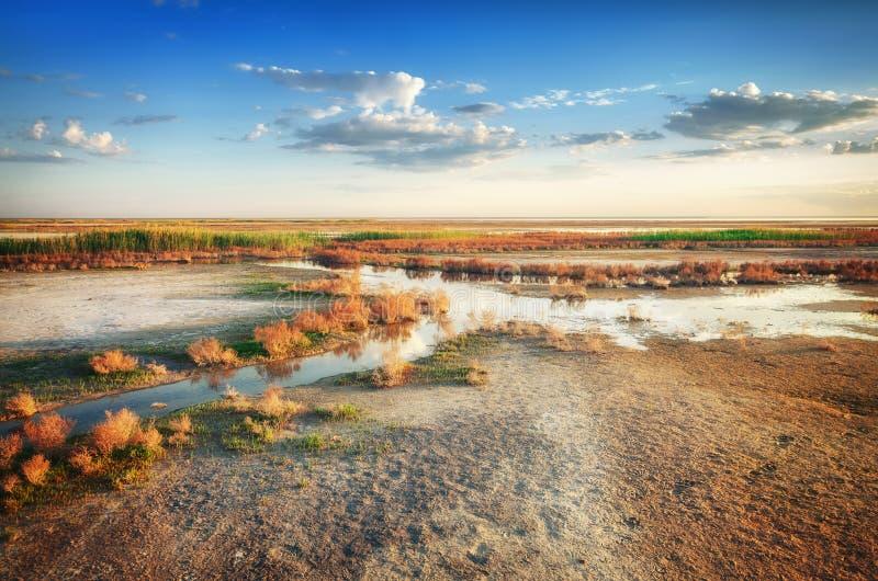 De stroom van mineraalwater gaat door droge grond onder mooie hemel Aardpanorama dichtbij zout meer Elton Het gebied van astrakan stock foto