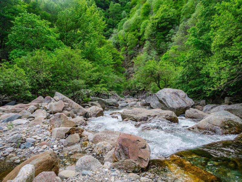 De stroom van Rialepianezzoli in Val Grande National Park royalty-vrije stock afbeeldingen