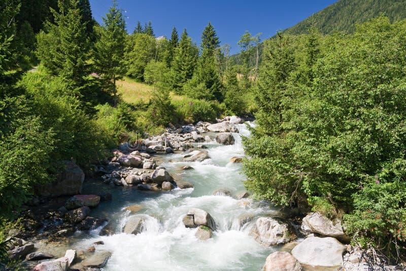 De stroom van Vermigliana, Trentino, Italië royalty-vrije stock afbeelding