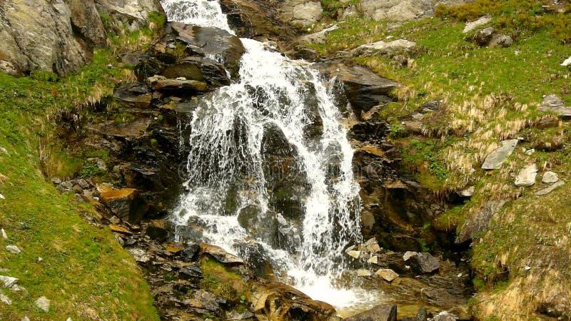 De stroomversnelling op snel bergbergstroom in Alpen, water stroomt over grote witte keien en bellen stock footage