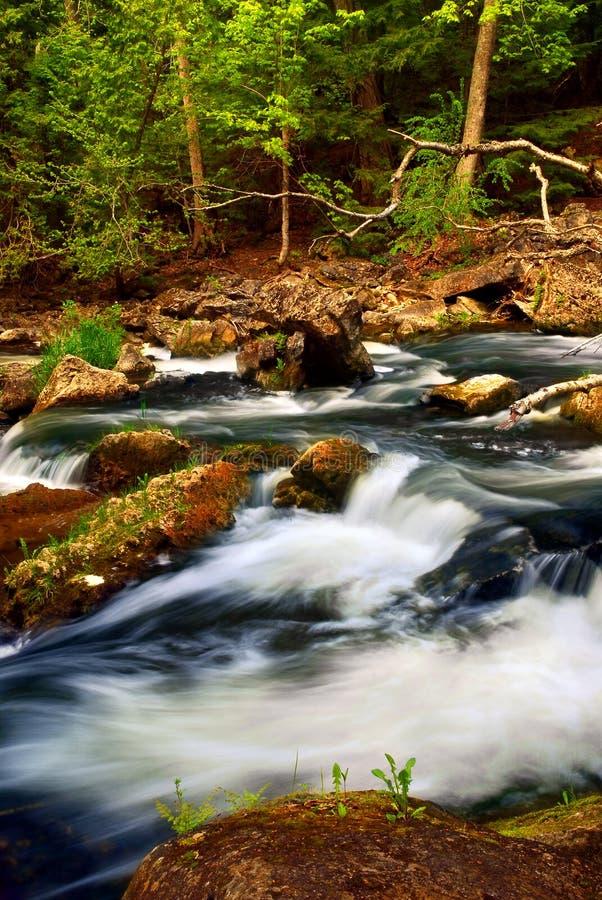 De stroomversnelling van de rivier stock afbeelding