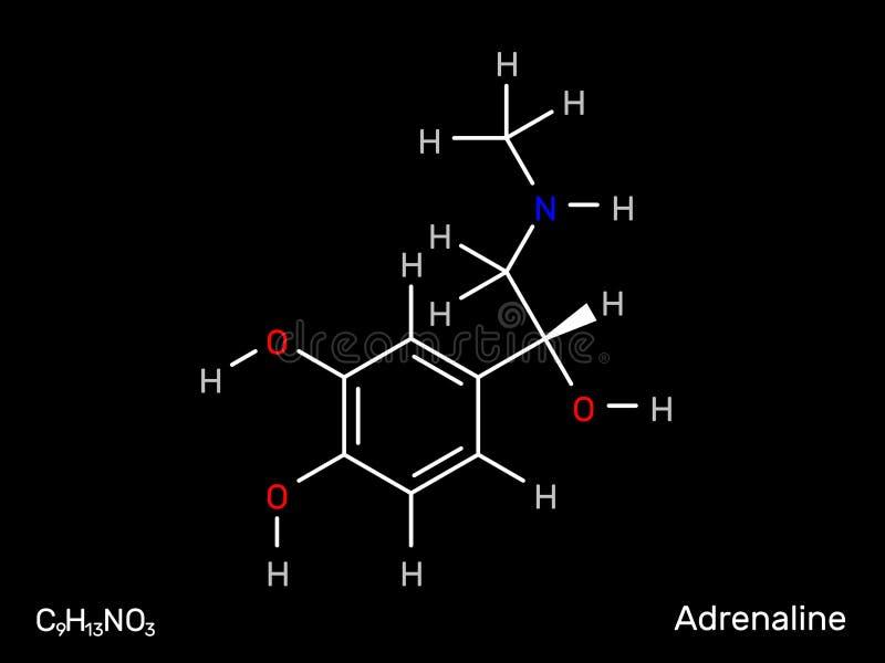 De structurele formule van de adrenalineneurotransmitter Vector illustratie royalty-vrije illustratie
