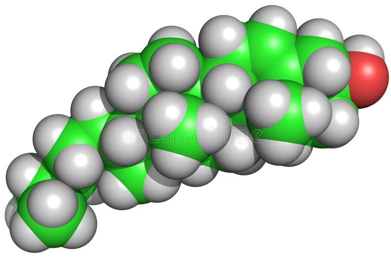 De Structuur van de cholesterol vector illustratie