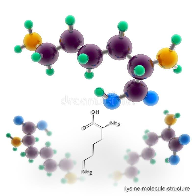 De structuur van de lysinemolecule stock illustratie