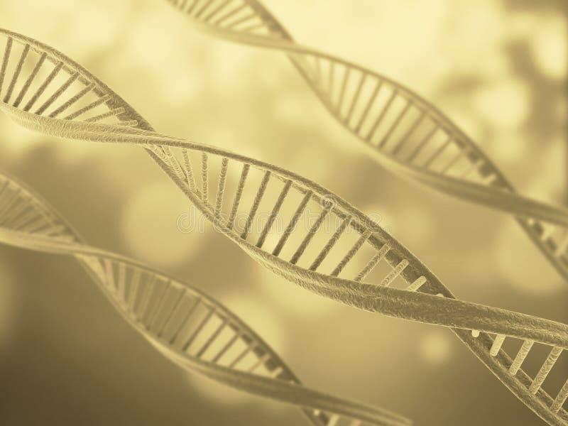 De structuur van DNA vector illustratie