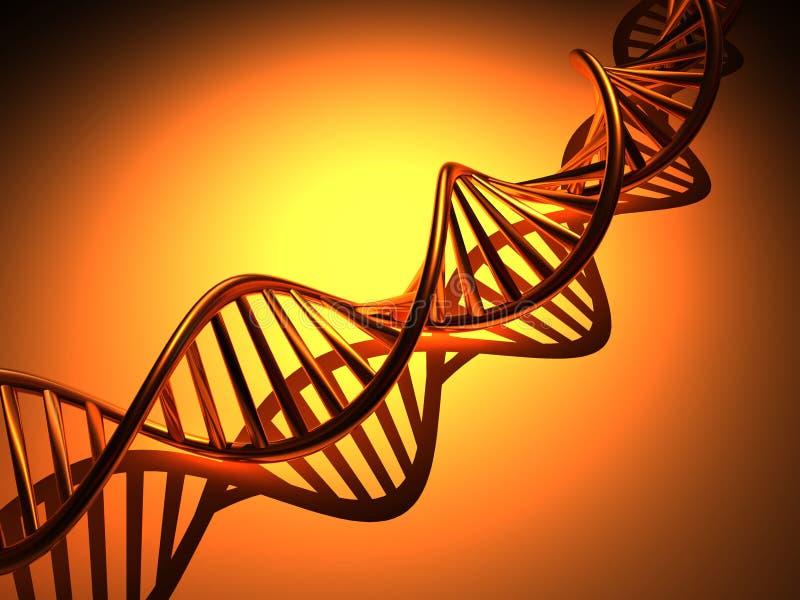 De structuur van DNA stock illustratie