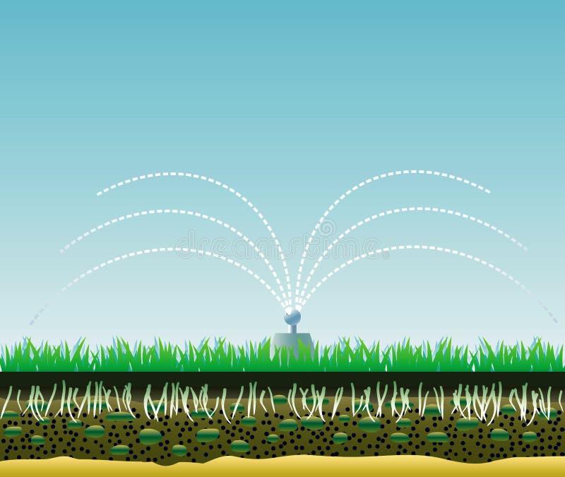 De structuur van het gazon. royalty-vrije illustratie