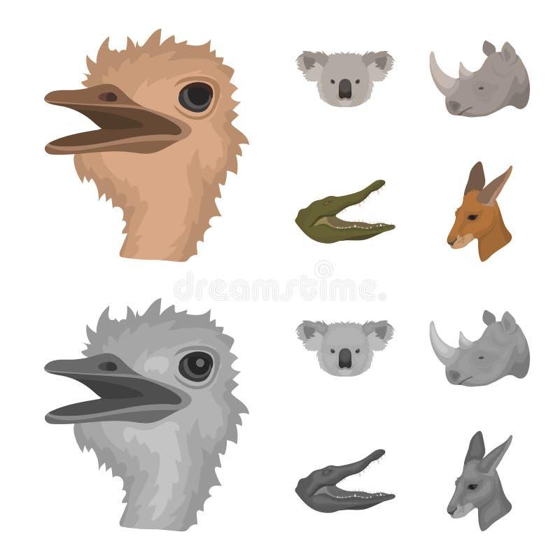 De struisvogel, koala, rinoceros, krokodil, realistische dieren plaatste inzamelingspictogrammen in beeldverhaal, zwart-wit stijl vector illustratie