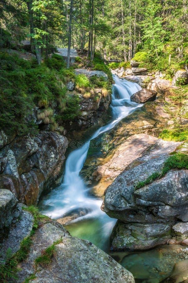 De Studenovodske-watervallen op een stroom in het bos stock afbeelding