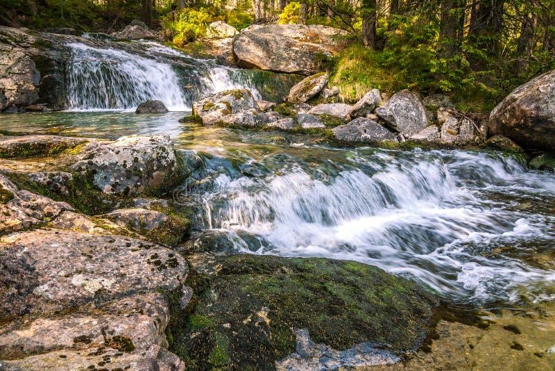 De Studenovodske-watervallen op een stroom in het bos stock foto
