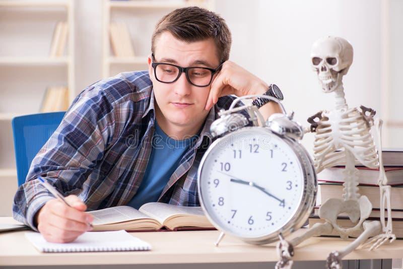 De student en het skelet die voor schoolexamens voorbereidingen treffen royalty-vrije stock foto's