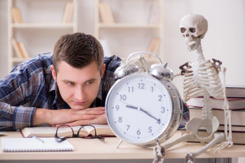 De student en het skelet die voor schoolexamens voorbereidingen treffen stock afbeeldingen
