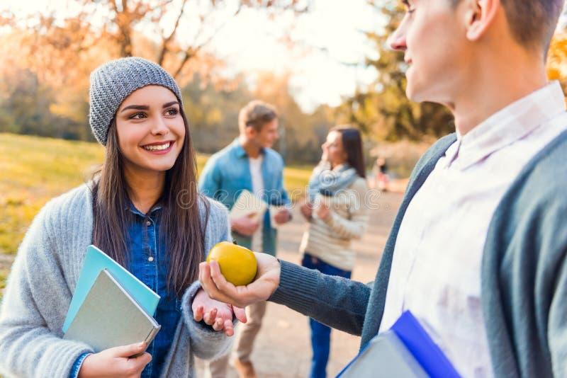 De studenten in de herfst parkeren royalty-vrije stock afbeelding