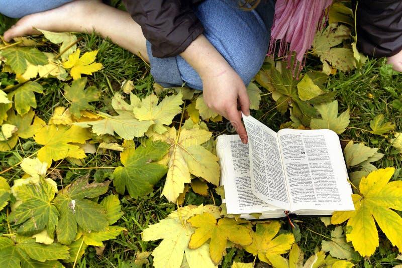 De Studie van de bijbel stock foto