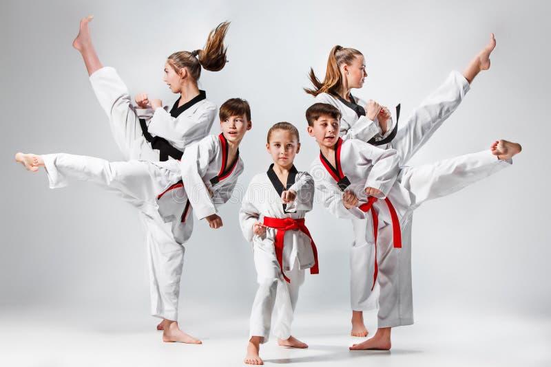 De studio die van groep jonge geitjes wordt geschoten die karatevechtsporten opleiden royalty-vrije stock foto