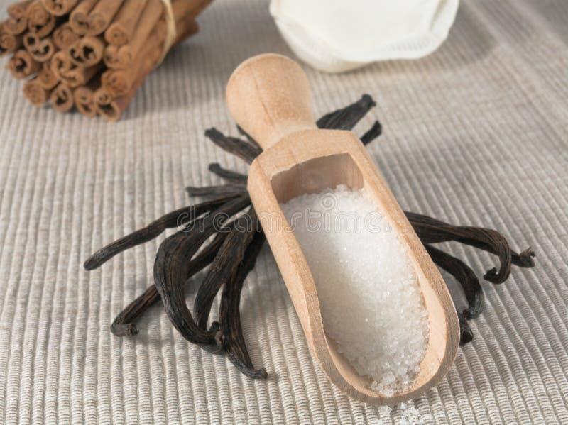 De suiker van de vanille stock afbeelding