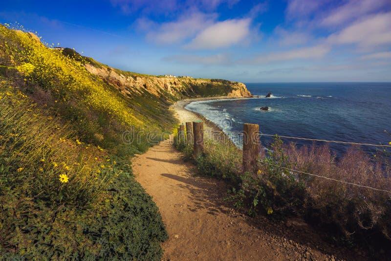 De Super Bloei van Californië van 2017, Rancho Palos Verdes royalty-vrije stock afbeeldingen