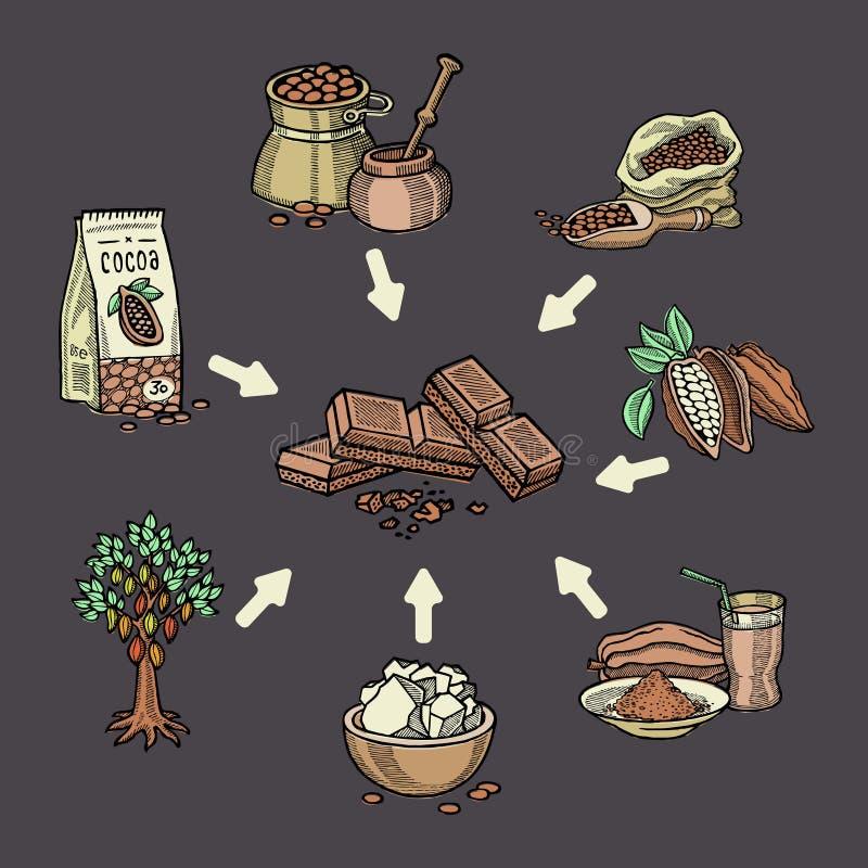 De super inzameling van de voedselchocolade voor infographic Peul, bonen, suiker, cacaoboter, chocolade, cacaodrank, choco en vector illustratie