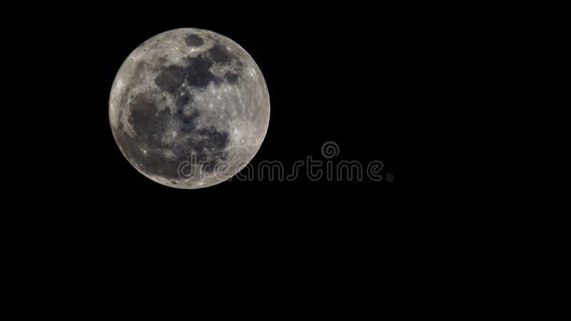 De Super Maan op Zwarte Hemel - November 2016 royalty-vrije stock foto