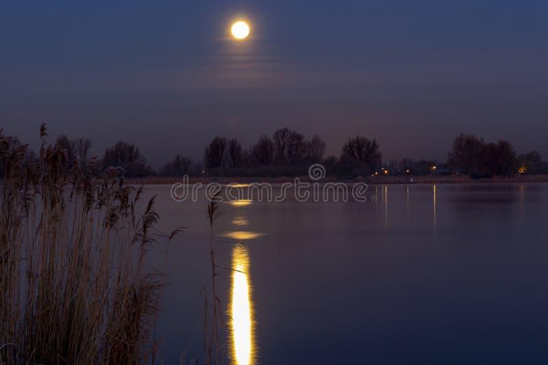 De super Maan is tijdens de koude die dageraad in het water van Zoetermeerse-plas in Zoetermeer, Nederland wordt weerspiegeld stock foto