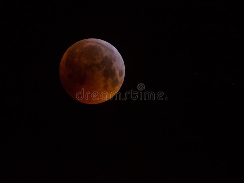 De super maan van de bloedwolf van Januari 2019 royalty-vrije stock foto