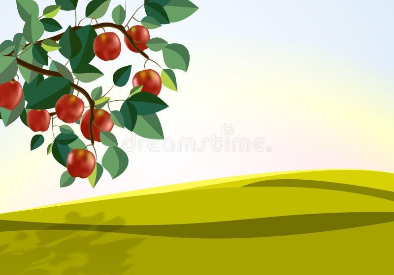 De tak van appelen stock illustratie