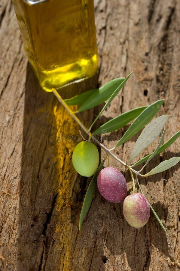 De tak van de olijf met olie royalty-vrije stock afbeeldingen
