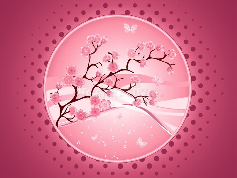 De tak van Sakura vector illustratie