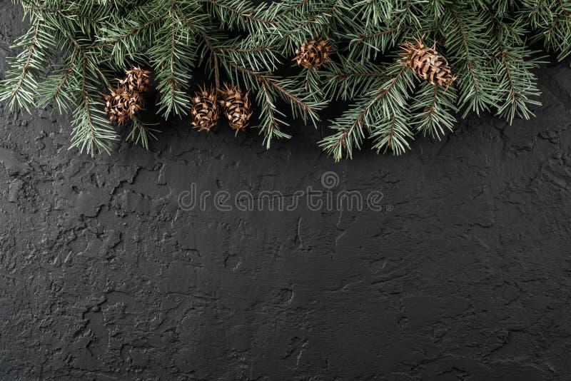 De takken en de denneappels van de Kerstmisspar op donkere achtergrond met sneeuwvlokken Kerstmis en Nieuwjaarthema stock fotografie