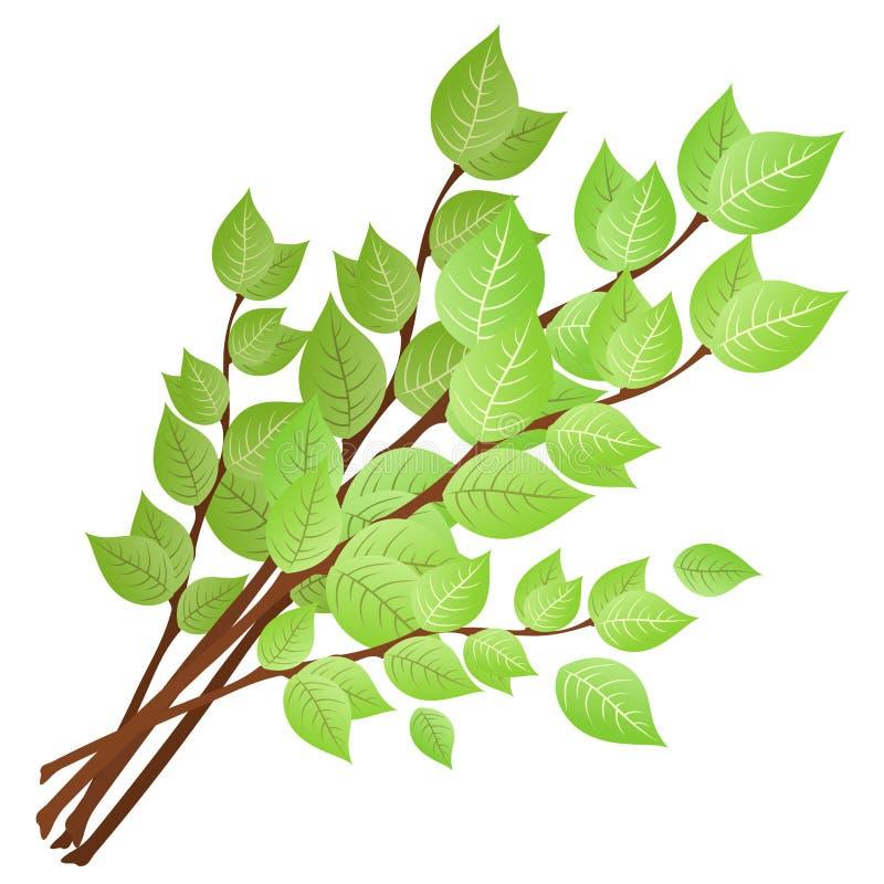 De takken met groene bladeren. vector illustratie