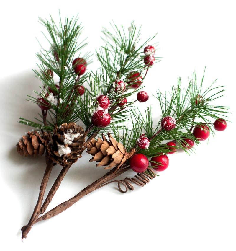 De takken van de Kerstmispijnboom met bessen royalty-vrije stock afbeeldingen