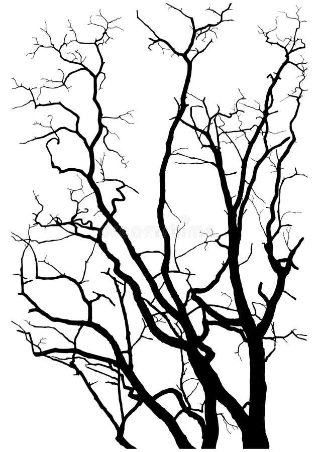De takkensilhouet van de boom stock illustratie