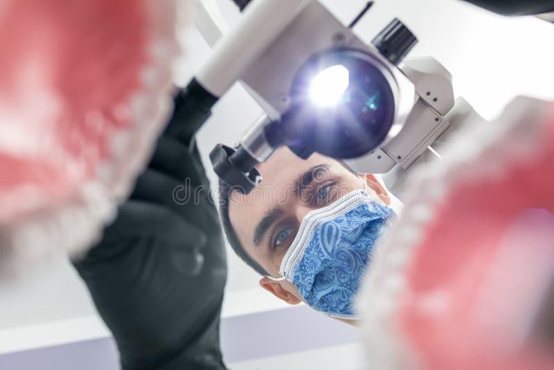De tandarts kijkt door kaakmodellen stock foto