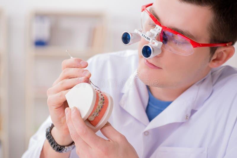 De tandarts werkende tanden inplanteren in medisch laboratorium royalty-vrije stock foto