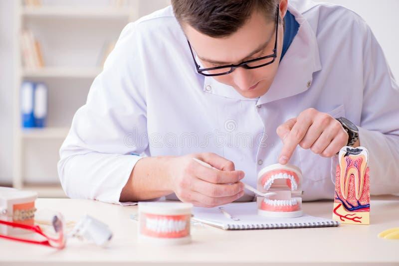 De tandarts werkende tanden inplanteren in medisch laboratorium royalty-vrije stock afbeelding
