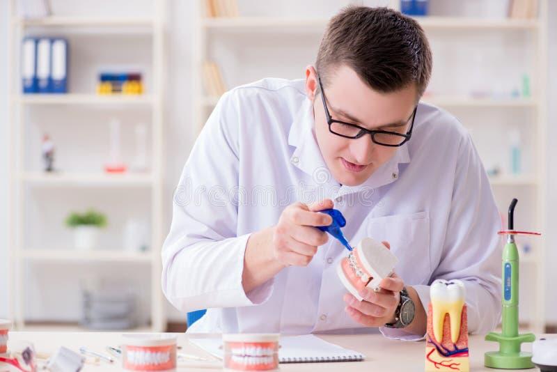 De tandarts werkende tanden inplanteren in medisch laboratorium royalty-vrije stock fotografie