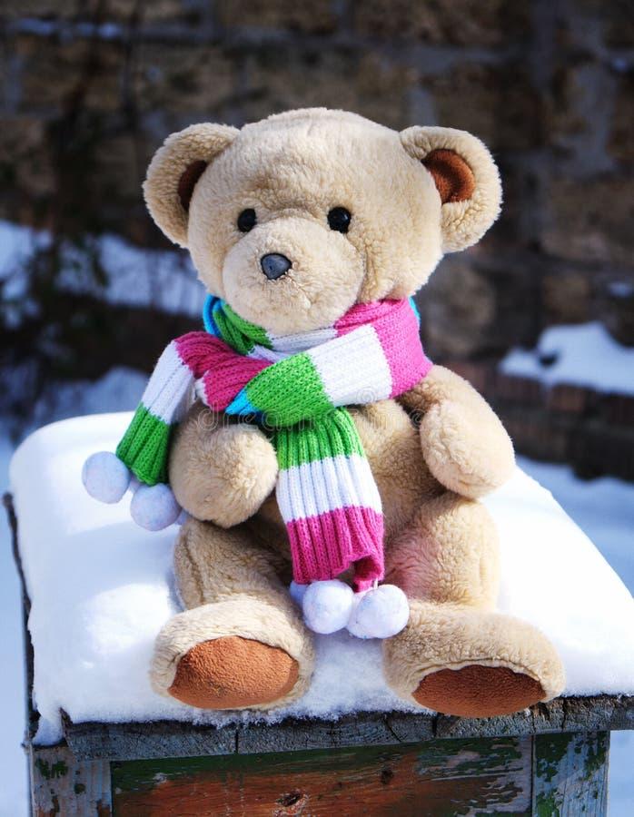 De teddybeer in een sjaal zit royalty-vrije stock afbeeldingen