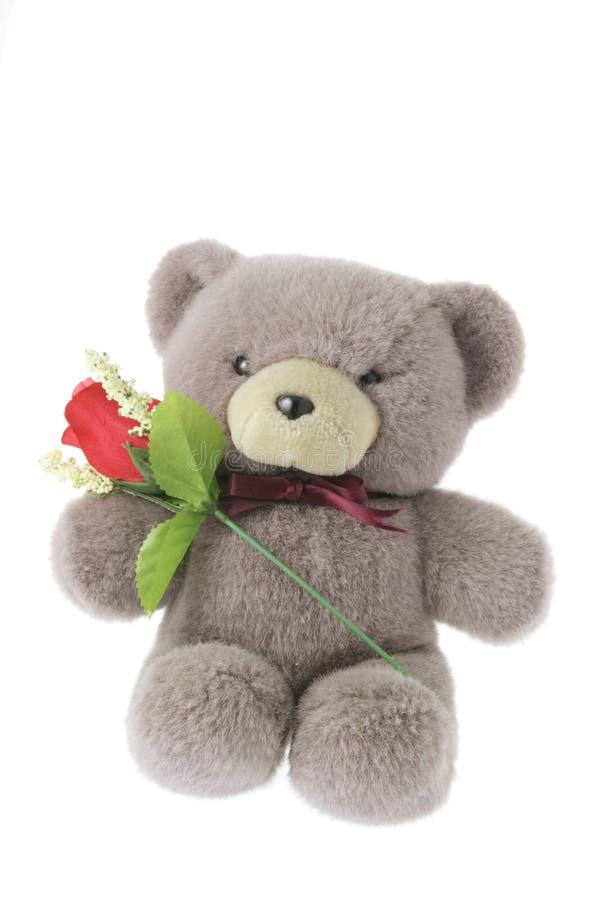De teddybeer met Rood nam toe stock afbeeldingen