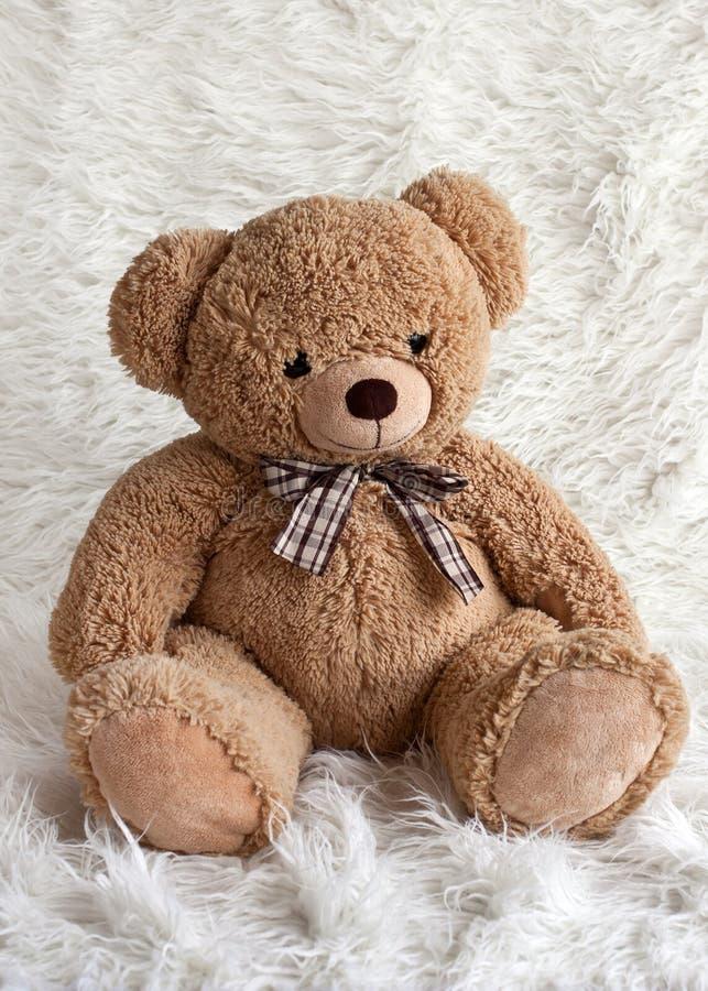 De teddybeer zit op een witte achtergrond stock afbeelding