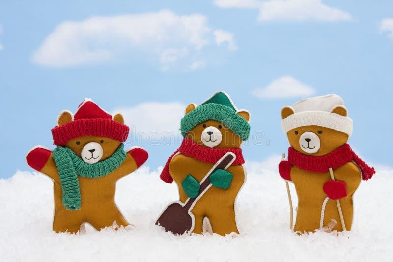 De Teddyberen van de winter stock afbeelding