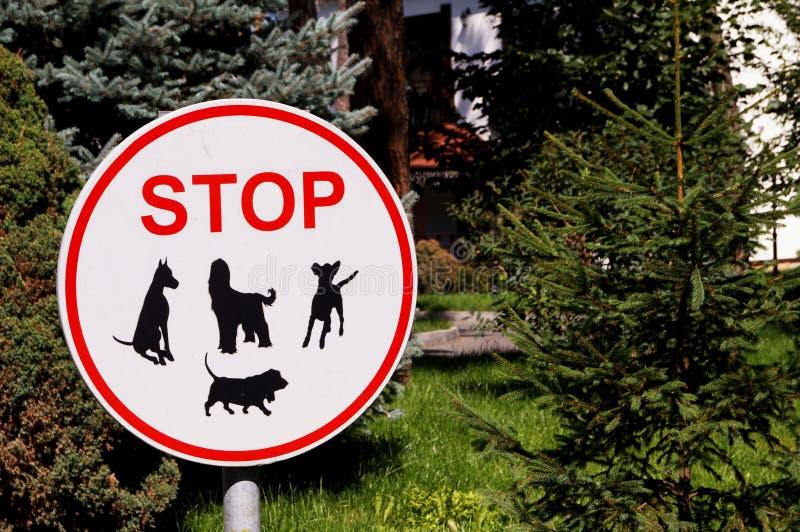 De tekenhonden worden niet toegestaan stock fotografie