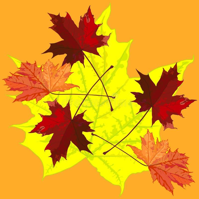 De tekening met esdoornbladeren in de herfst, patroon royalty-vrije stock foto