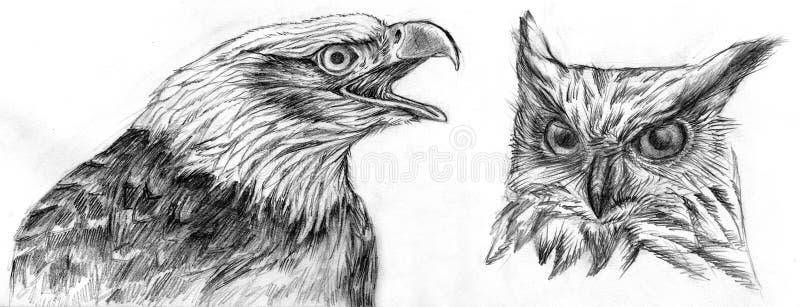 De tekening van de adelaar en van de Uil vector illustratie