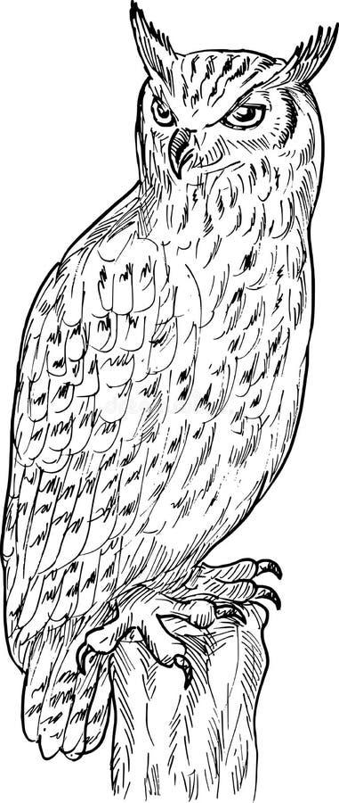 De tekening van de Uil van de adelaar vector illustratie