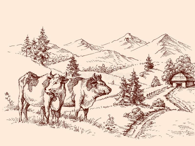De tekening van het koeienlandbouwbedrijf royalty-vrije illustratie