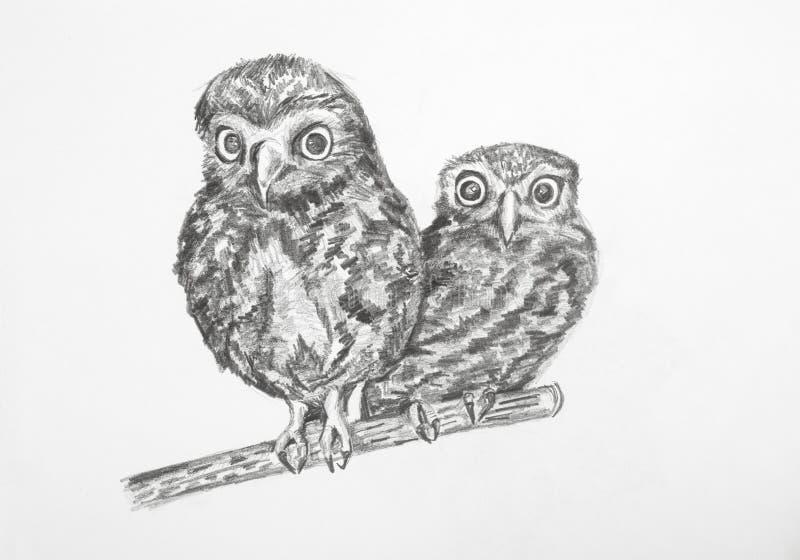De tekening van het potlood Uilen stock foto