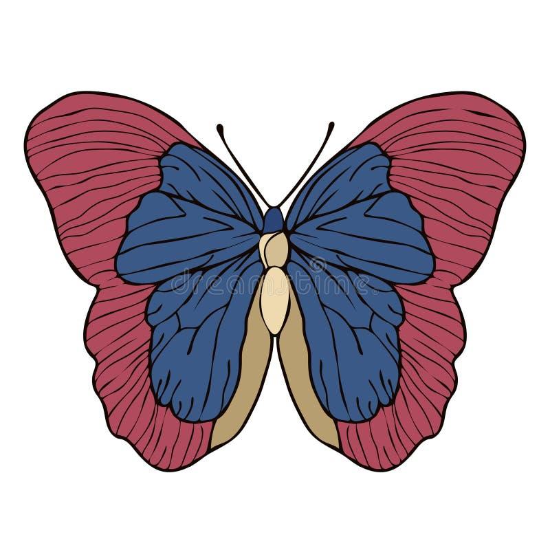 De tekening van het vlinderbeeldverhaal, vectorillustratie Abstractie getrokken vlinder met rode blauwe die vleugels op witte ach vector illustratie